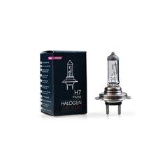 M-TECH Halogen bulb PX26d H7 24V/100W